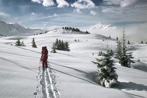 Bild zum Artikel: Schneelandschaft und Skifahrer