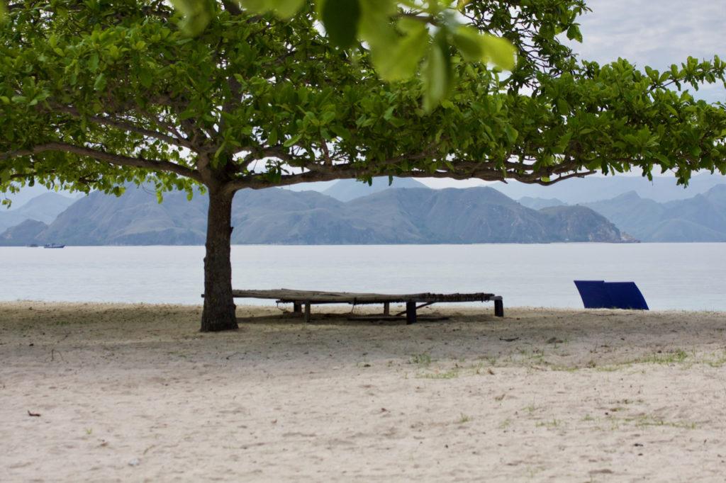 Baum, Liege, Strand, Meer